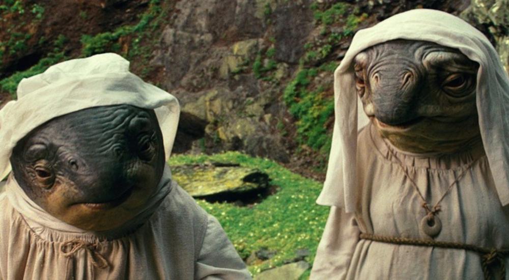 Star Wars 8 Fischnonnen